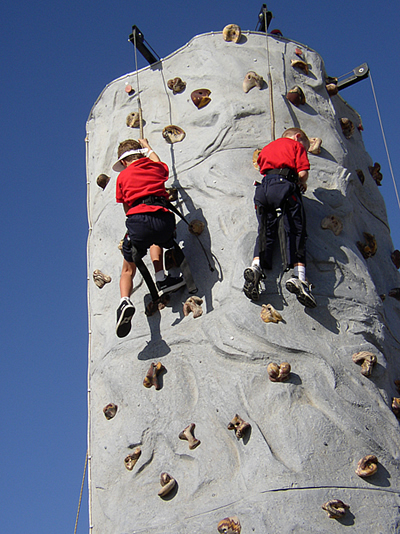 Backyard Rock Climbing Wall